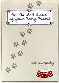 Sympathy Card Pet Loss Pet Condolence Sympathy Card On The Loss Of Your Pet Dog Amazon