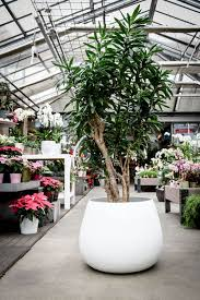 ronco large contemporary vessel planter