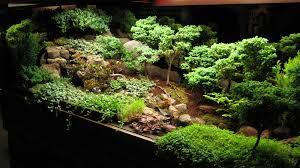 indoor mini garden inspirational indoor mini garden garden designs