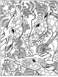 Giraffes Coloring Pages For Adults