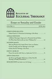 com bulletin of ecclesial theology essays on human  com bulletin of ecclesial theology essays on human sexuality and gender 9781499571219 gerald hiestand christopher bechtel matthew mason