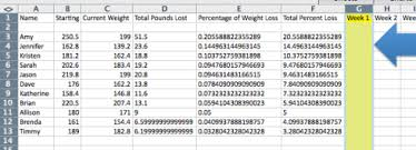 Weight Loss Percentage Spreadsheet Weight Loss Contest Spreadsheet On How To Make An Excel Spreadsheet
