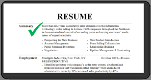 How To Write A Professional Profile Resume Genius Summary Examples ...