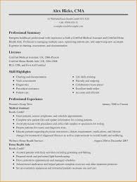 Summary Section Of Resume Templates Writing Magnificent Executive