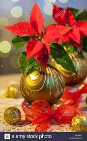 Material Weihnachtsstern Gold Weihnachtskugeln Glas Tee