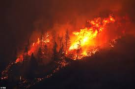 Paradise residents fleeing California wildfire got trapped in ...