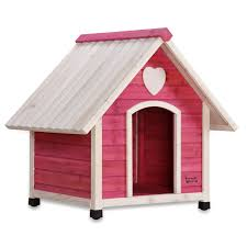 Creative Dog Houses In Review Bible Gateway Popular Verses Idolza