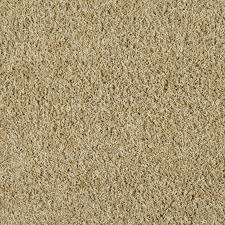 beige carpet texture. STAINMASTER Active Family Near And Dear Calico Beige Textured Interior Carpet Texture 7