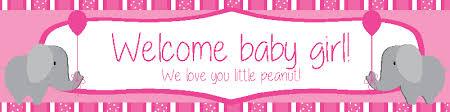 Welcoming Baby Girl Baby Girl Banner Rome Fontanacountryinn Com