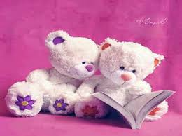 most beautiful teddy bear wallpapers on