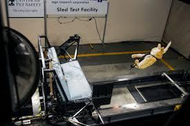 crash test dog dummy launching when safety harness breaks