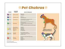 Animal Chakra Chart Dog And Cat Chakras Purposes And Imbalances Reiki Hand Positions