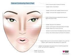 this chart will turn you into a highlighting and contouring pro