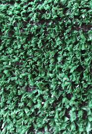 home carpet indoor outdoor budget turf ivy indoor outdoor carpet
