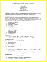 It Business Analyst Resume Examples
