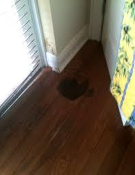 hardwood floor water damage