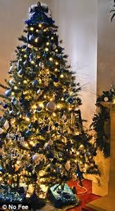 Could YOU be allergic to your Christmas tree? Pines are haven for ...