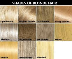 Hair Color Chart Hair Extension Chart And Hair Weave Color