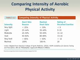 Heart Rate Activity Chart Comparing Intensity Of Aerobic Physical Activity