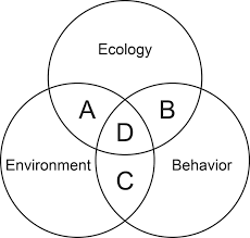 A Venn Diagram Tracks Which Of The Following Venn Diagram Showing The Unique Combination Of Factors