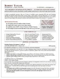 Business Development Executive Resume Interesting Executive Resume Sample Vice President Executive Resume VP