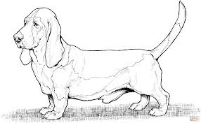 Small Picture Dog Coloring Page