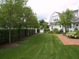 Backyard Orchard Culture Too Good To Be True  Northwest Edible LifeGood Trees For Backyard