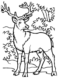 Small Picture Free Printable Elk Coloring Pages Coloring Home