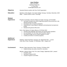 Resume Navigation 100 Post Navigation Sample Professional Resume Examples Of A for 3