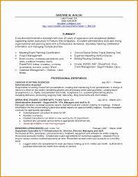 Resume Executive Summary Example Awesome Summary For Resume Example
