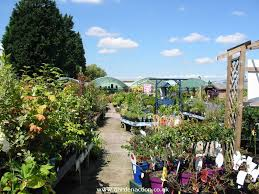 the whole outdoor plant area was free from litter and plant debris in most places the aisles were wide and uncluttered
