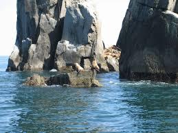 Northern Lights Coupon Book Kenai Fjords Do Kenai Fjords Tours Sell Out Alaska Cruise Critic