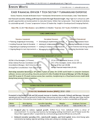 Cfo Resume Template Gorgeous Cfo Resume Template Word Chief Financial Officer Resume Example
