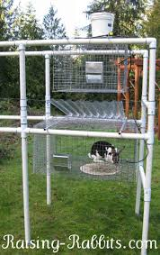 rationale for using all wire cages on pvc rabbit hutch frames plus links to good sized wood rabbit hutcheore