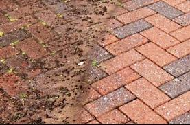 how to clean block paving maintain