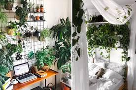 indoor gardening. Brilliant Gardening Intended Indoor Gardening O