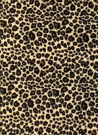 Leopard Print Wallpaper Bedroom Leopard Backgrounds Wallpaper Cave