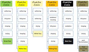 Herbal Tea Chart Tea Processing Chart The Tea Catcher