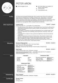 Resume Examples By Real People Founder Resume Example