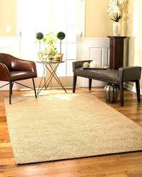 outdoor sisal rug indoor jute clay rugs rugged maniac photos