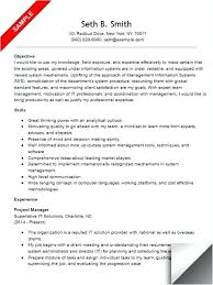 It Resume Examples Delectable Project Manager Resume Examples Construction It Format In