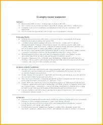 Professional Qualifications Resume Stunning Example Resume Summary Gorgeous Professional Resume Summary Examples