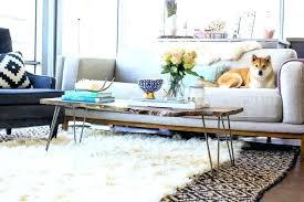 mesmerizing rug over carpet living room medium size of studio apartment area rugs amazing layered diy