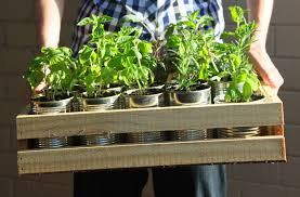 Herb Garden 5 Compelling Reasons To Start Your Herb Garden Now