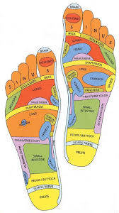 Foot Organ Chart Even Though It Maybe Sounds A Bit Crazy There Are Points On