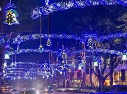 Small Picture Christmas lights Singapore dresses up its malls and streets for