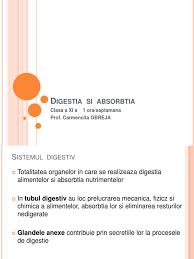 Digestia mecanica