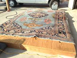 how to clean an area rug with pet urine photo 6 of 6 how to clean how to clean an area rug with pet urine