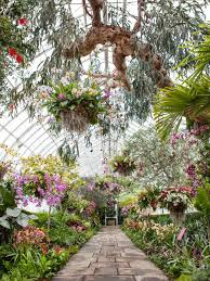 photo by courtesy new york botanical garden