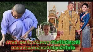 ภาพล่าสุดเกี่ยวกับพระราชินีศรีรัศมิ์สุวะดี! ผอมแห้งและผอมแห้งปลูกผักในวัด  ฉันเจ็บมากที่เห็นภาพของคุณ - YouTube